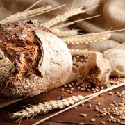 Kontaktformular Bäckerbursche, Fragen Bäckerbursche, Anregungen Bäckerbursche